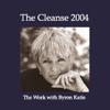 Byron Katie Mitchell - The Cleanse 2004 (Unabridged  Nonfiction) artwork