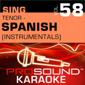 Hasta El Fin (Karaoke Instrumental Track) [In the Style of Luis Miguel]