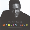 Marvin Gaye - Mercy Mercy Me (The Ecology) kunstwerk