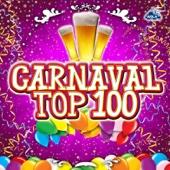Various Artists - Carnaval Top 100 kunstwerk
