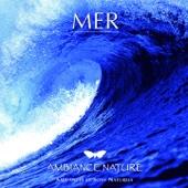 Ambiance nature : Mer