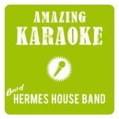 Best of Hermes House Band (Karaoke)