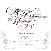 Canon In D (Pachabel) From the Album Magnificent Orchestrations for Weddings - Dominic Hauser & Gregg Nestor