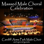 Chorus of the Hebrew Slaves - Cardiff Arms Park Male Choir