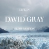 Life in Slow Motion, David Gray