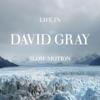 Life in Slow Motion, David Gray