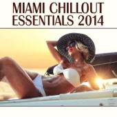 Miami Chillout Essentials 2014