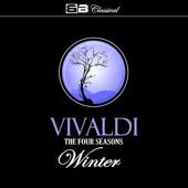 The Four Seasons, Winter: Concerto No. 4 in F Minor: I. Allegro non molto - Tatjana Grindenko & Academic Chamber Orchestra
