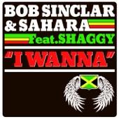 I Wanna (Remix Radio) [feat. Shaggy] - Single