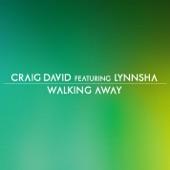 Walking Away (feat. Lynnsha) - Single