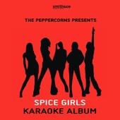 Spice Girls Karaoke Album