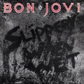 Bon Jovi We Weren't Born to Follow (live)