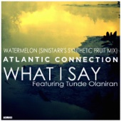 What I Say / Watermelon (Sinistarr's Synthetic Fruit Mix) - Single cover art