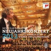 An der schönen blauen Donau, Walzer, Op. 314