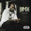 Mixtape, DMX