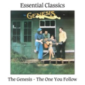 Mary McKee and The Genesis - The One You Follow artwork