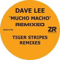 Dave Lee - Mucho Macho
