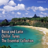 Bossa and Latin Chillin' Tunes - The Essential Collection