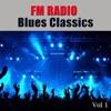 FM Radio Blues Classics, Vol 1, Ry Cooder & The Allman Brothers Band