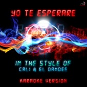 Yo Te Esperaré (In the Style of Cali,El Dandee) [Karaoke Version]