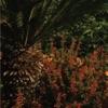 Something Good (Remixes) - EP, alt-J