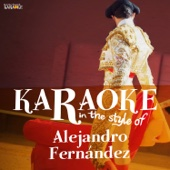 Karaoke - In the Style of Alejandro Fernández