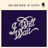 I Will Wait - Single, Mumford & Sons