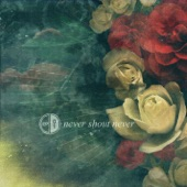 Never Shout Never - EP