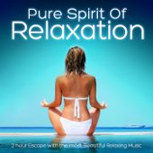 Pure Spirit of Relaxation - 2 Hour Escape With the Most Beautiful Relaxing Music