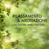 Rilassamento e Meditazione con Suoni della Natura
