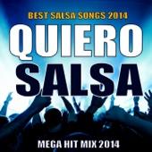 Quiero Salsa 2014 - Mega Hit Mix (Best Salsa Songs 2014)