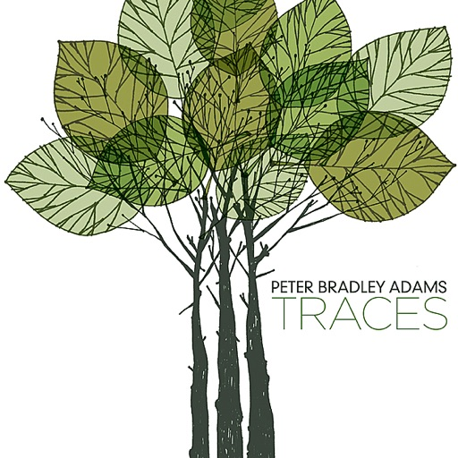 From the Sky - Peter Bradley Adams