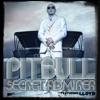 Secret Admirer (feat. Lloyd) - Single, Pitbull