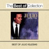 Ma vie - Mes plus grands succès (Best of Julio Iglesias), Julio Iglesias