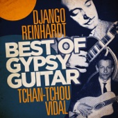 Best of Gipsy Guitar