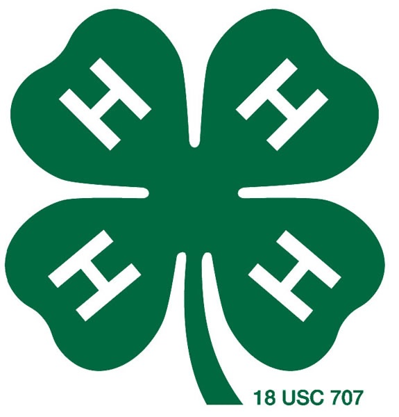Indiana 4-H Electric Program, Division I Project