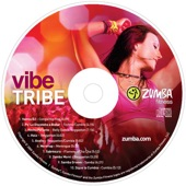 Download Vibe TribeofZumba Fitness