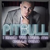 Pitbull - I Know You Want Me (Calle Ocho) [More English Radio Edit]