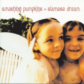Smashing Pumpkins - Siamese Dream vs. Ween - Chocolate and Cheese: Match #29