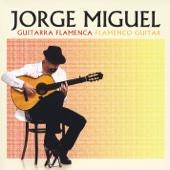 Guitarra Flamenca / Flamenco Guitar - Jorge Miguel