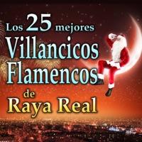 Villancicos Flamencos  Los 25 Mejores - Raya Real MP3 - wolbideathsden