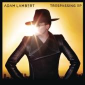 Trespassing (Remixes)