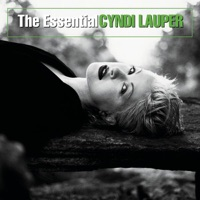 Girls Just Want to Have Fun - Cyndi Lauper