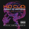 Pursuit of Happiness (Steve Aoki Extended Remix) [feat. MGMT & Ratatat] - Single, Kid Cudi