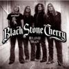 Blind Man - Single, Black Stone Cherry