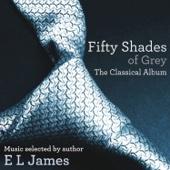 Cinquante cuances de grey - L'album classique