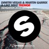 Tremor (Sensation 2014 Anthem) - Single, Dimitri Vegas, Martin Garrix & Like Mike