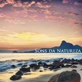Sons da Natureza - Relaxamento e Meditação, Bem Estar e Musicas para Relaxar