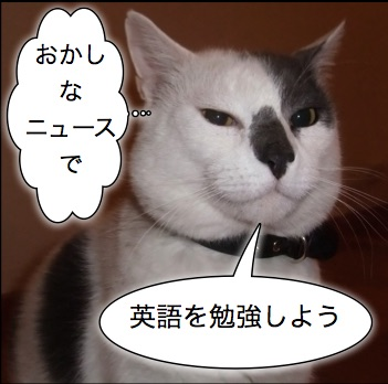 おかしなニュースで英語を勉強しよう
