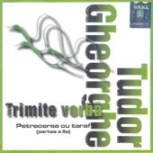 Trimite Vorba (Petrecere cu taraf (II))